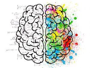 Rysunek mózgu: lewa półkula w działaniach matematycznych, prawa półkula w kolorowych kleksach