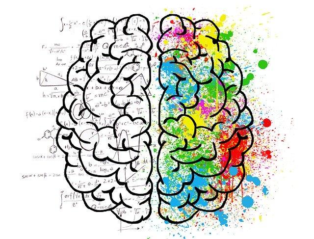 schemat mózgu: lewa półkula w działaniach, prawa półkula w kolorowych kleksach